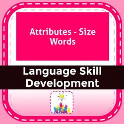 Attributes - Size Words